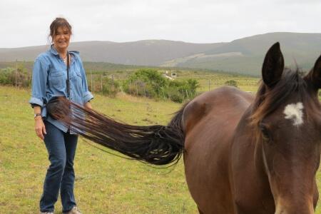laughing-waters-farm-dancing-horses